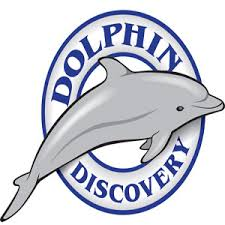 Shop Travel at Dolphin Discovery